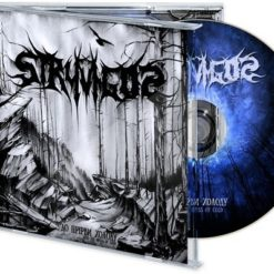 STRYVIGOR - Into The Abyss Of Cold