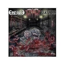 EPICRISE / GARROTER / CLITNSLIT - Split CD
