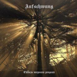 AUFSCHWUNG - Сквозь тернии реалий
