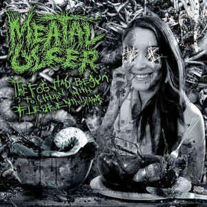 MEATAL ULCER - The Fog Had Begun To Churn...