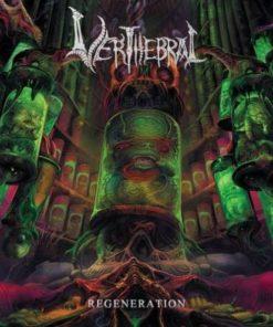 VERTHEBRAL - Regeneration