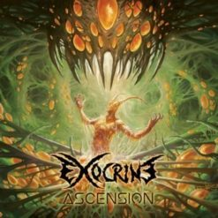 EXOCRINE - Ascension