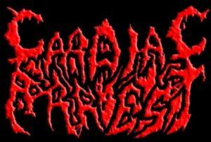 paratshop-cz-paratshop-cz-paratmagazine-com-48110-logo.jpg